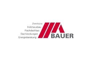 Webseiten Referenz Logo Thomas Bauer GmbH